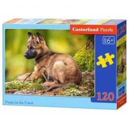 PUZZLE 120EL. PUPPY IN FOREST